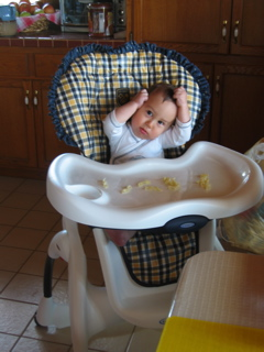IMG_6986_tobiasXSL_pasta_high_chair